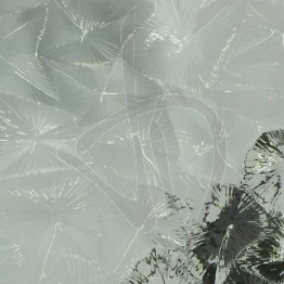 vetro-stampato-88